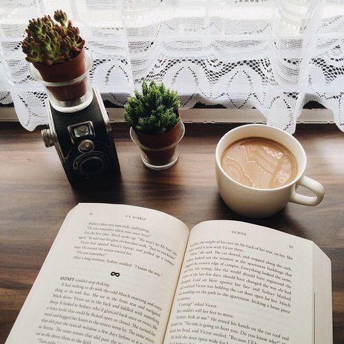 cactus-and-books